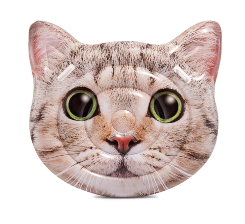Intex 58784 Kočka